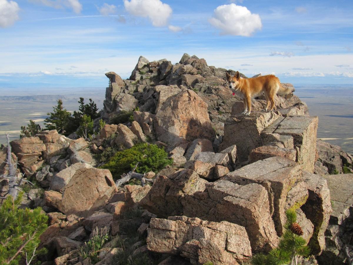 Ferris Mountain, Charlie Brown Range, Wyoming (6-17-17) – The