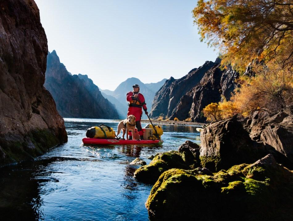 Dog Paddling: 6 Tips to Take Your Pooch Canoeing, Kayaking