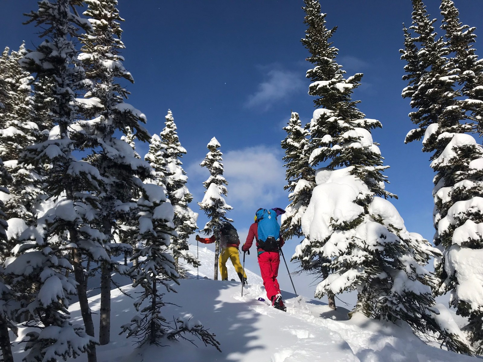 How to Effectively Layer Up for Ski Touring   Adventure Sports Network