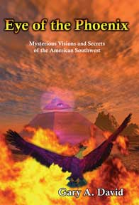 Image result for eye of the phoenix book