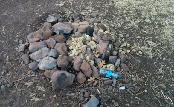 a pile of horse dung left in a firepit