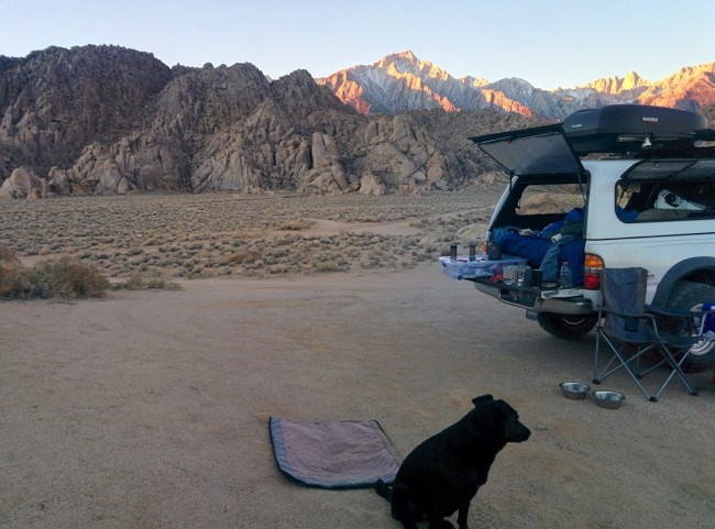 dog and Tacoma with Mount Whitney range bathed in twilight behind