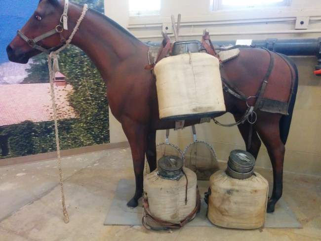 Model of Mule with fingerling transport containers