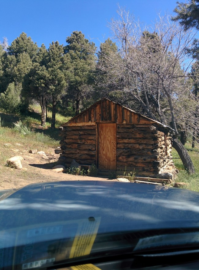 View of the cabin while Parked In The Cabin's Driveway