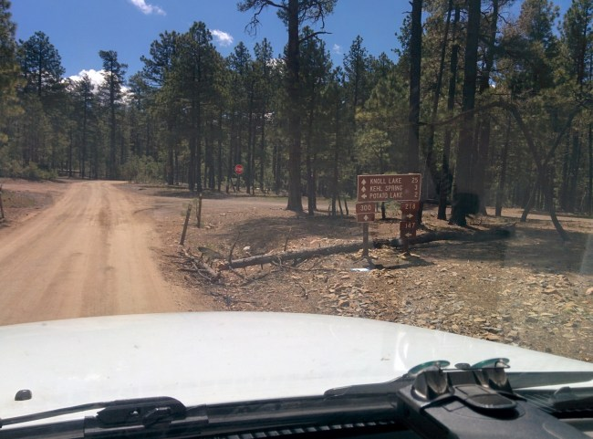 Sign pointing to Potato lake and other mogollon rim area campgrounds