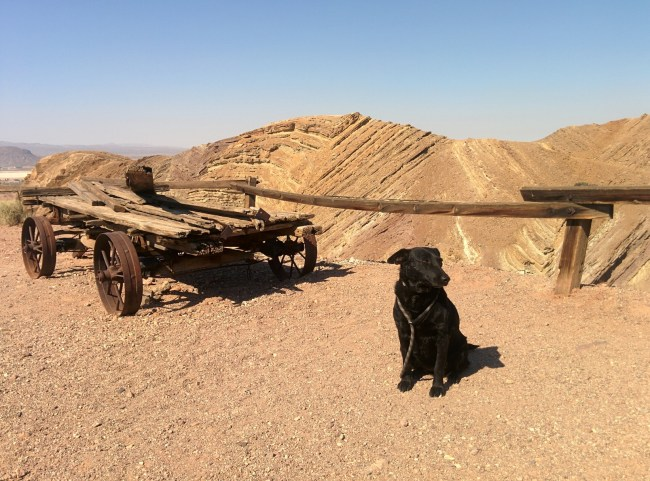 Calico Ghost Town02
