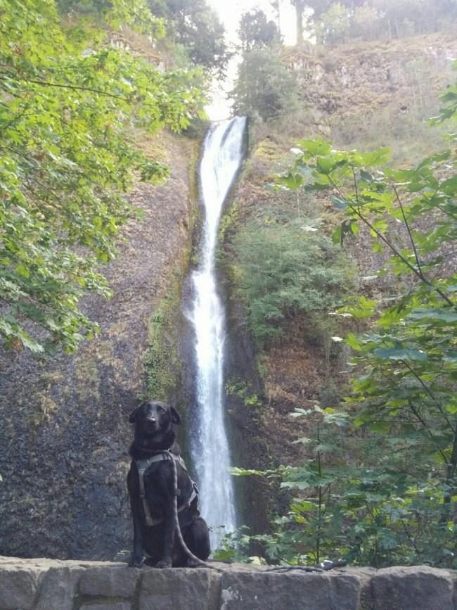 Another Shot At Horsetail Falls