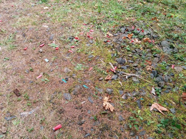 large amount of spent shotgun shells and brass casingsleft behind in a forest area