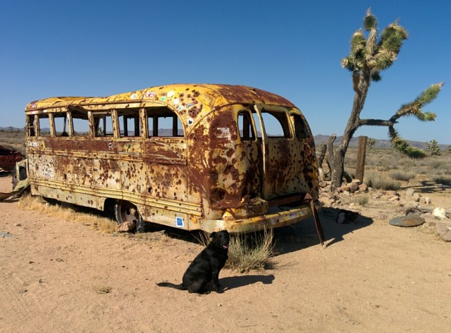 Beat up old school bus on the Mojave Road