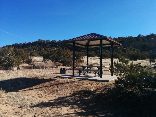 Shaded Picnic Table And Fire Ring At Each Campsite
