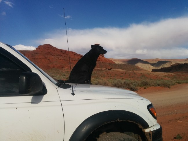 Willow sitting on the hood of the Tacoma positioned so that the Mexican Hat rock formation looks like it is sitting on her head.