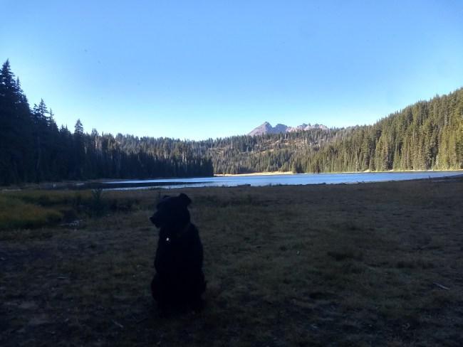 Willow, in shadows, at the foot of Todd Lake
