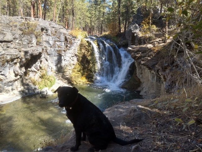 Willow sitting in front of McKay Waterfall on The South Side Of The Creek