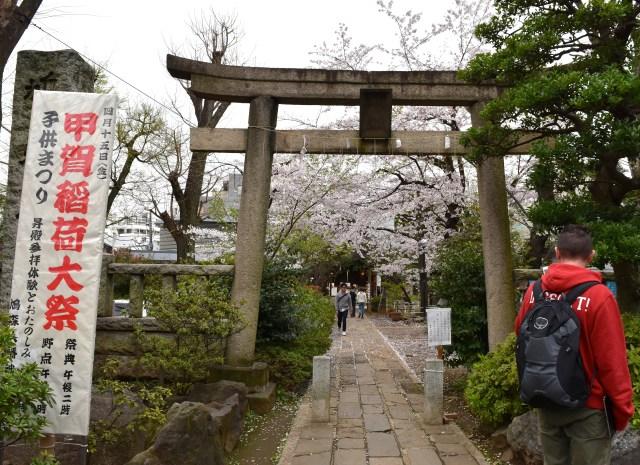 Japan_shrine_adventureswithluda