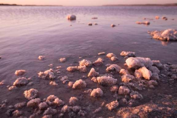 Hutt Lagoon Pink Lake, Western Australia