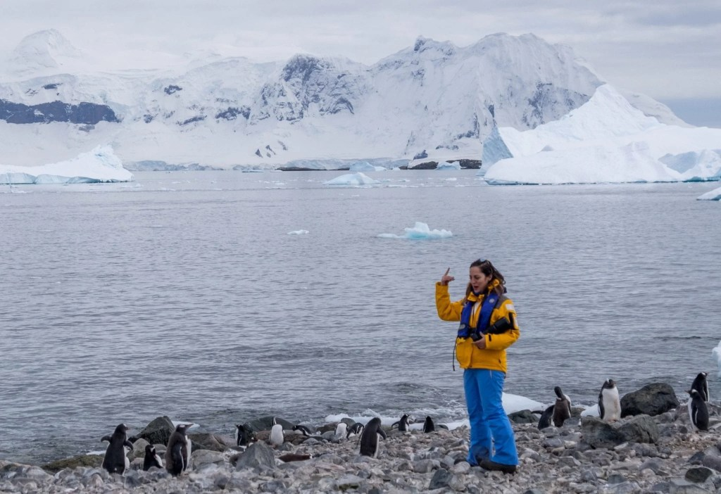 Kate talks to a group of penguins in Antarctica.