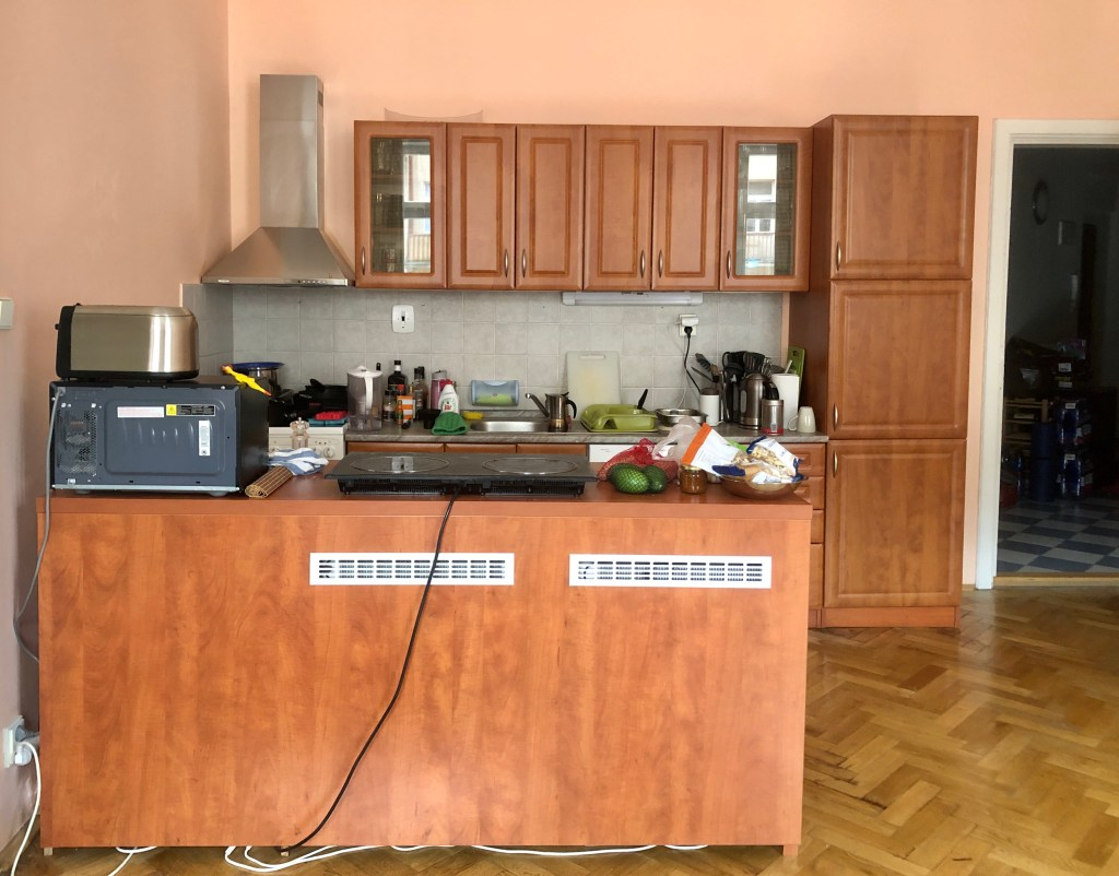 View of kitchen: kitchen cabinets in background, island in foreground topped with an induction stovetop and other appliances.