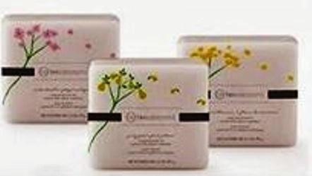 beauticontrol moisturizing body bars
