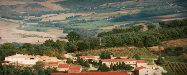 Tour Tuscan Wines at Home! @Snooth, @FATTORIABARBI, #SnoothV, #winelovers