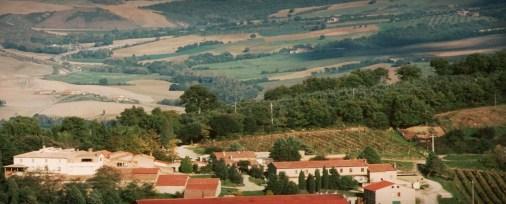 barbi winery