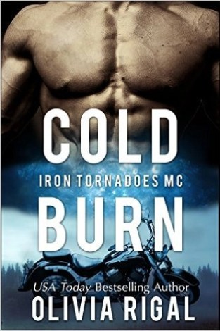 book cold burn
