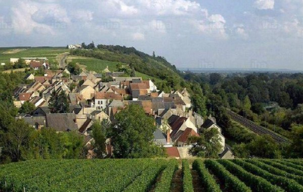 The Countryside of the Loire Valley