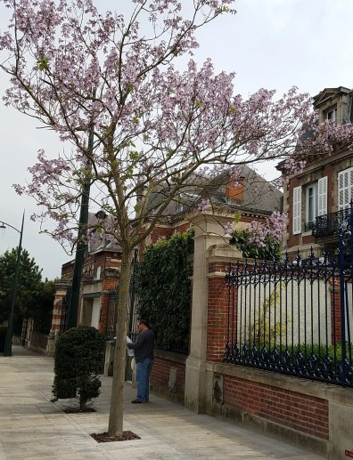 the Avenue du Champagne in Eperney is a good palce to start your tour