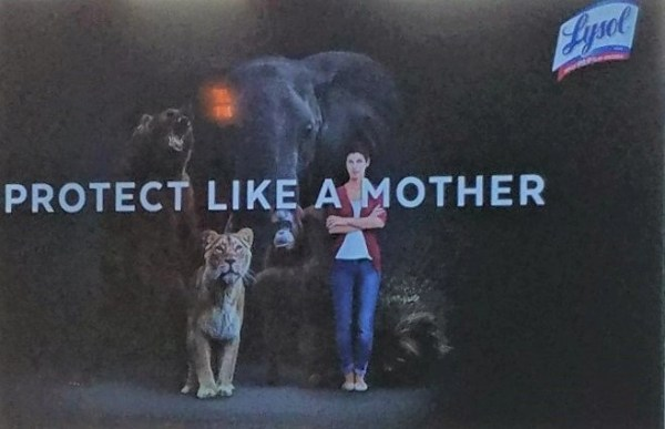Lysol's Protect Like A Mother Exhibit Brings BIG Animals to Brooklyn!