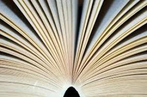 book fan