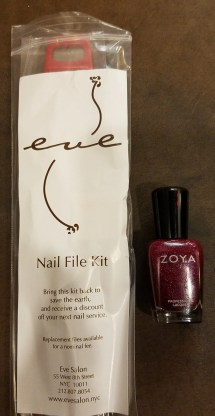 eve salon nail file kit