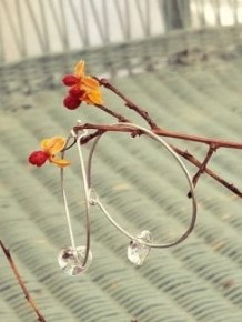 swarovksi crystal heart earrings by ISabelle Grace for mothers day great gift idea