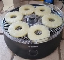 chefman food dehydrator with fruit