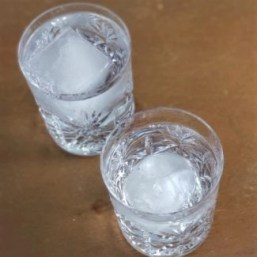 round and square ice cubes frrom Zoku in glasses photo by alison blackman (c) 2018