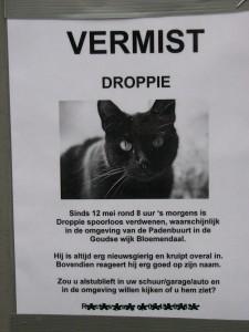 De bekende briefjes aan lantaarnpalen, waarbij katteneigenaren laten weten de verdwenen kat de missen