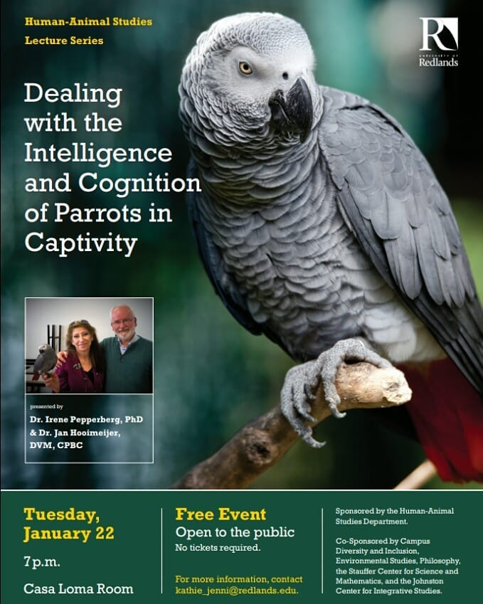 Dealing with the Intelligence and Cognition of Parrots in Captivity, Redlands University CA