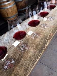 Pinot Noir Clone tasting