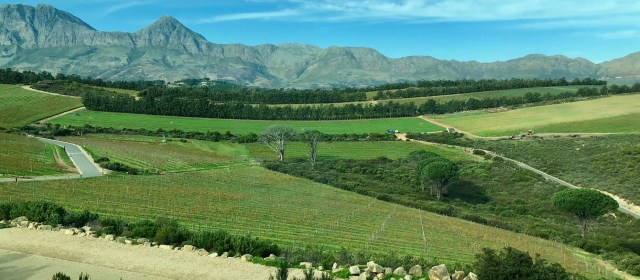 Waterkloof Wines: Working with the Elements