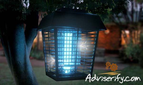 Bug Zapper Reviews