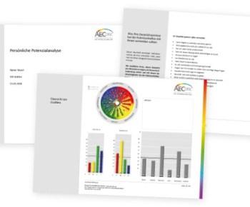 Ergebnisbericht der Persönlichkeitsanalyse AEC-disc