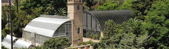 Valencia acoge una consulta ciudadana europea sobre comunicación científica