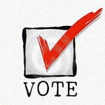 vote_check_image