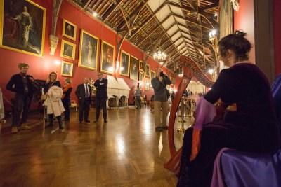 aej-kilkenny-walking-tour-castle-15-harpest