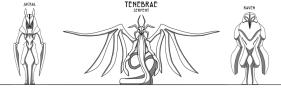 Tenebrae Statues