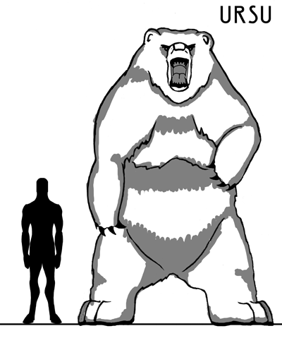 Ursu.png