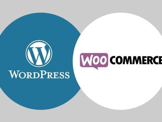 Formation wordpress à Lyon