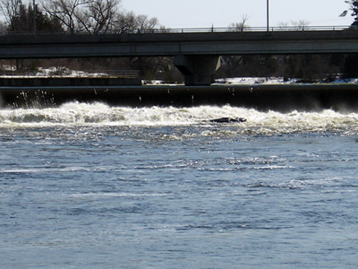 Madawaska River and weir and bridge