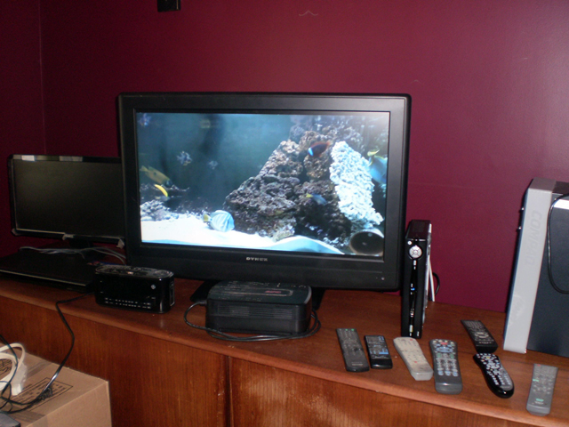 Aquarium Channel on Flat panel Television jpg