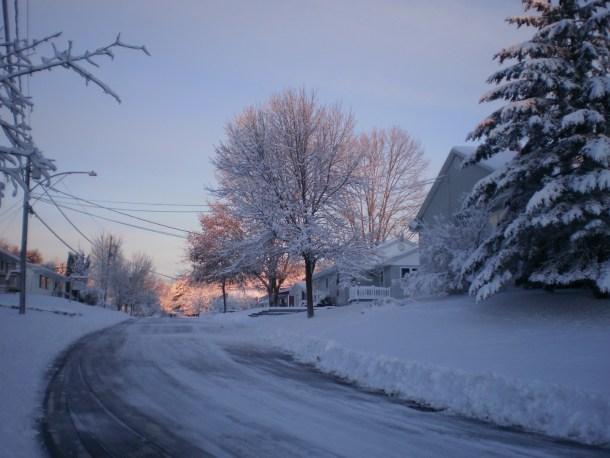 Light behind snowy trees on Wellington Court.