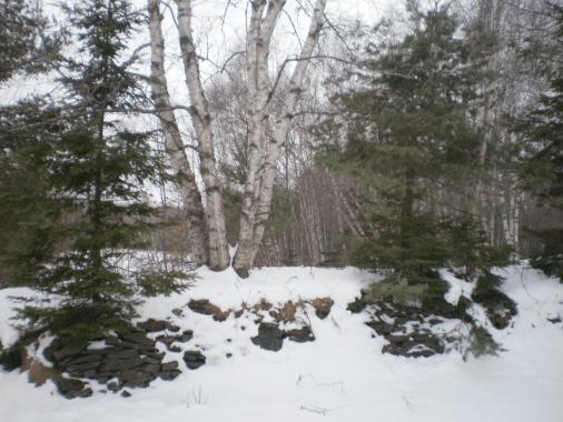 Deserted deer hill on a grey morning.