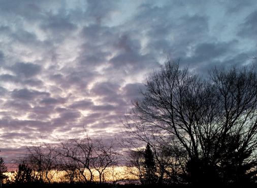 Puffy purple clouds just before sunrise.